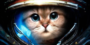 EE Space Kitteh! Stolen from eSpecBooks' website